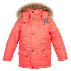 Фото Коллекция Зима для мальчиков, Куртки Куртка для мальчика 4з0715