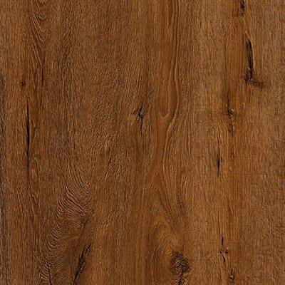 Sierra Nevada Oak 447