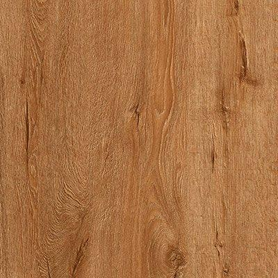Sierra Morena Oak