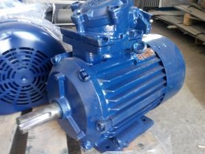 Фото  Электродвигатели взрывозащищенные электродвигатель АИММ 160M2   18.5 кВт. 3000 об/мин.
