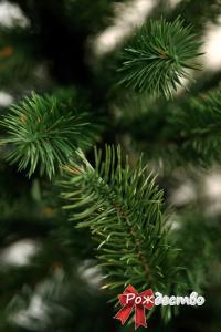 Фото Литые елки и сосны, Елка литая Люкс Елка Литая Люкс 120