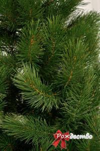 Фото Литые елки и сосны, Сосна литая Царская Сосна Литая Царская 120