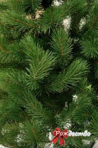 Фото Литые елки и сосны, Сосна литая Царская Сосна Литая Царская 180