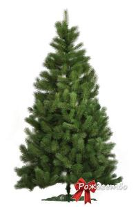 Фото Литые елки и сосны, Сосна литая Царская Сосна Литая Царская 250