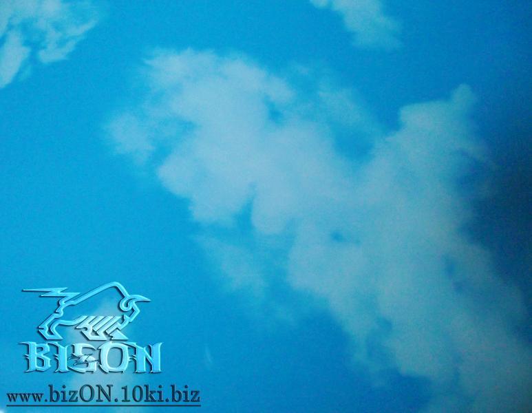 «Небо»   (Арт. R49) пластиковые панели ПВХ (термоперевод) Riko коллекция ES