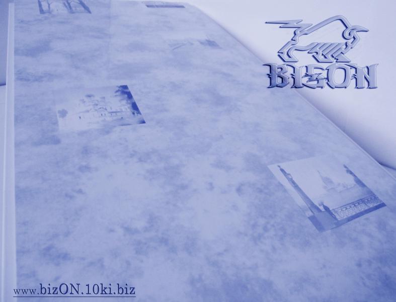 Фото Товара НЕТ в наличии «РОМАНТИКА»   Пластиковые панели ПВХ   (Термоперевод)   «RIKO»