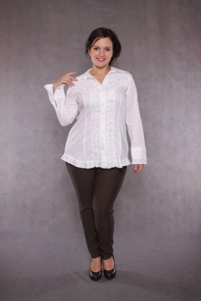 Блузка DP 1014R