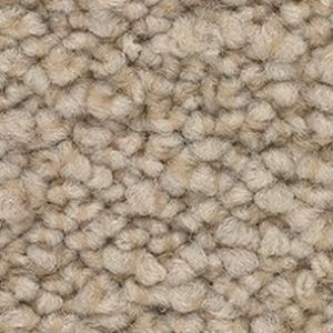 Фото  Ковровое покрытие ковролин