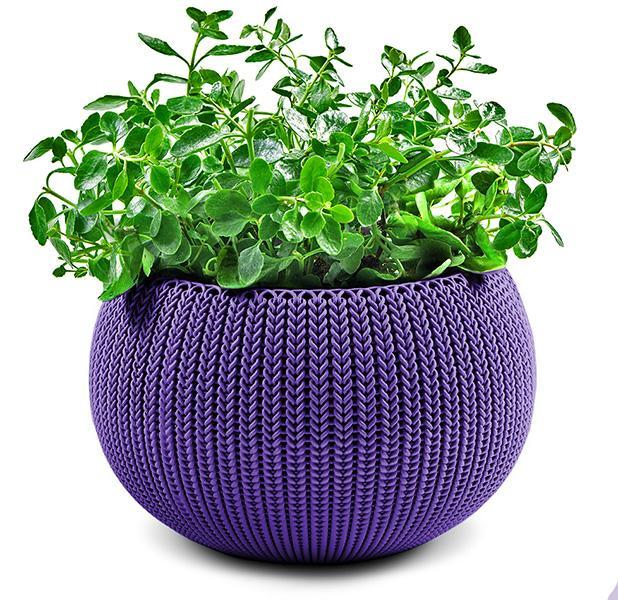 Кашпо Cozies М, фиолет