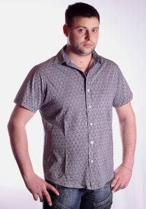 Фото Рубашки и безрукавки, рубашки короткий рукав Модель: 2012-108