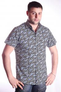 Фото Рубашки и безрукавки, рубашки короткий рукав Модель: 2012-103