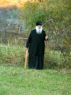 Сбор отца Георгия из 16-ти Трав – универсальное средство для лечения различных болезней и недугов