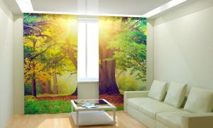 Фото 3D фотошторы, Для комнаты, Природа Солнечное дерево
