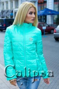 Фото Куртки, Дутые и стеганые куртки Куртка женская воротник