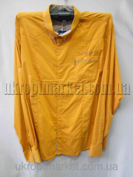 """Мужская рубашка Батал """"Marakesh"""" LM-661 №C77991"""