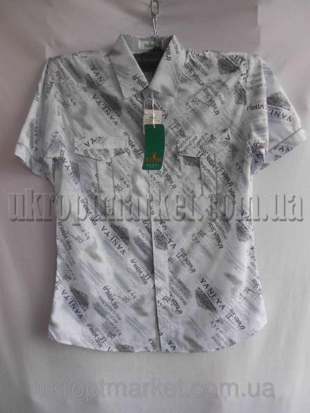 """Мужская рубашка """"Alians"""" ZR-235 №C79277"""