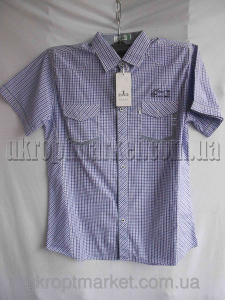 """Мужская рубашка """"Alians"""" ZR-235 №C79276"""