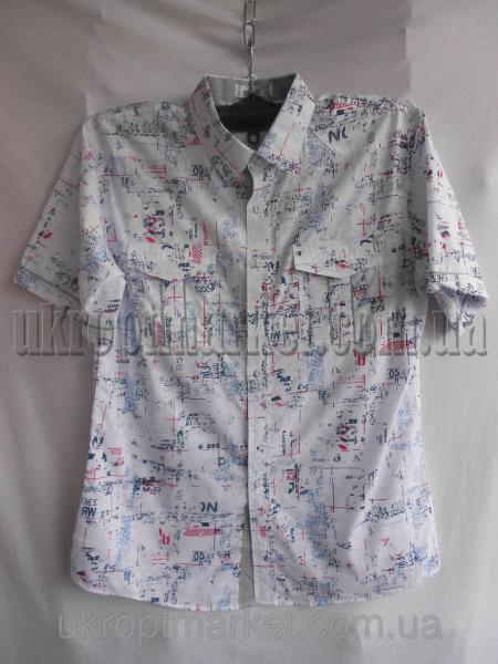 """Мужская рубашка """"Alians"""" ZR-235 №C79278"""