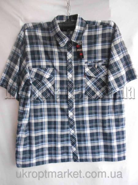 """Мужская рубашка """"Alians"""" ZR-235 №C79279"""