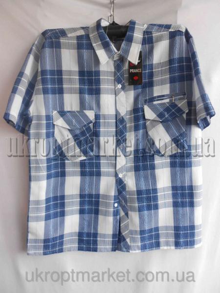 """Мужская рубашка """"Alians"""" ZR-235 №C79280"""