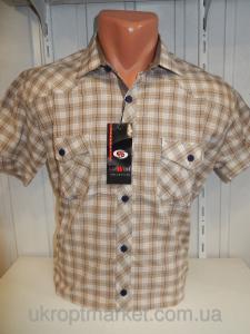 Фото МУЖСКАЯ ОДЕЖДА, Рубашки мужские оптом, Мужские рубашки с коротким рукавом Мужская Рубажка