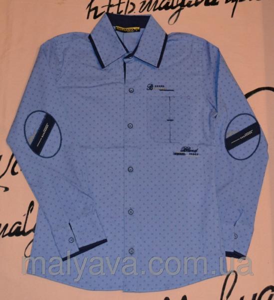 Рубашки школьные оптом от 128 до 164 Blueland