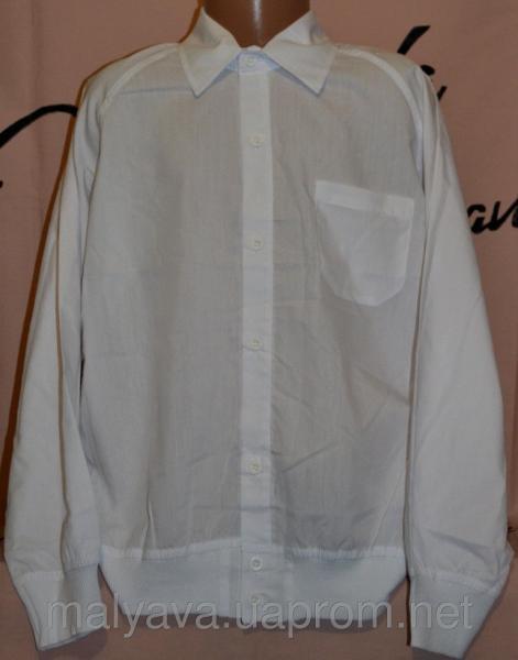 Рубашка белая на манжете от 110 до 128 Blueland