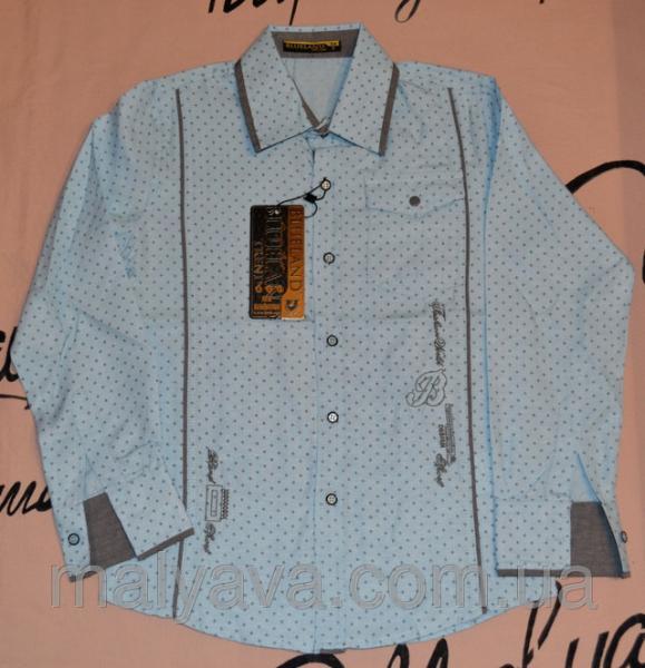Рубашки для мальчиков от 128 до 164 Blueland