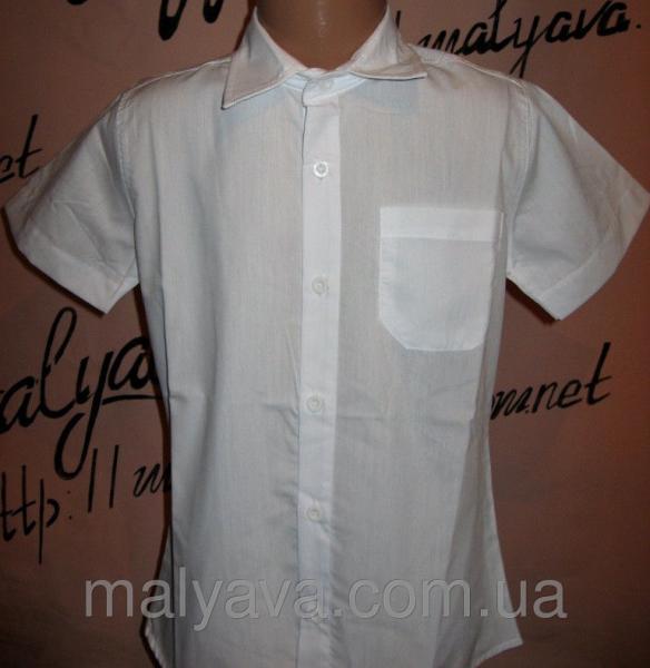 Белая рубашка прямая от 128 до 164 Blueland