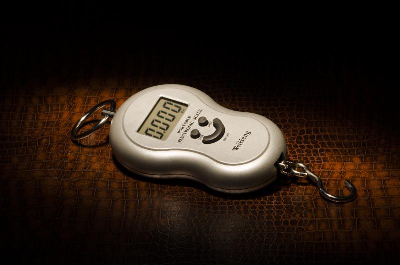 Кантер W-40 кг Империум Либра Весы Оптом