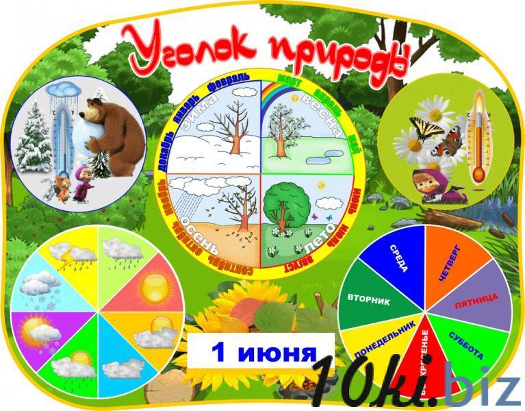 """Стенд """"Уголок природы"""" купить в Беларуси - Оборудование для учебных заведений"""
