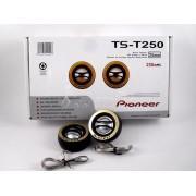 Пищалки Pioneer TS-JS250