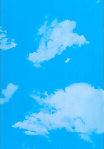 ES 08.10 Небо — Пластиковая панель ПВХ