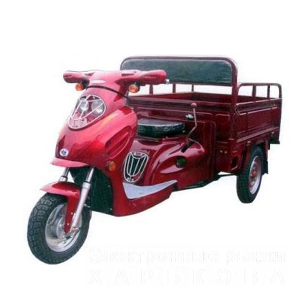 Грузовой мотоцикл Europard Foton FT 110 ZY