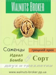 Фото Walnuts Broker Саженцы грецкого ореха Запорожье 0957351986 Walnuts Broker