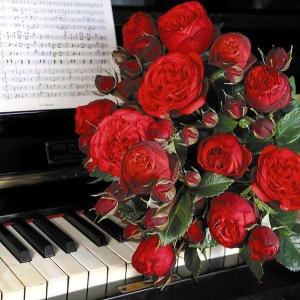 "Piano ""Пиано"""