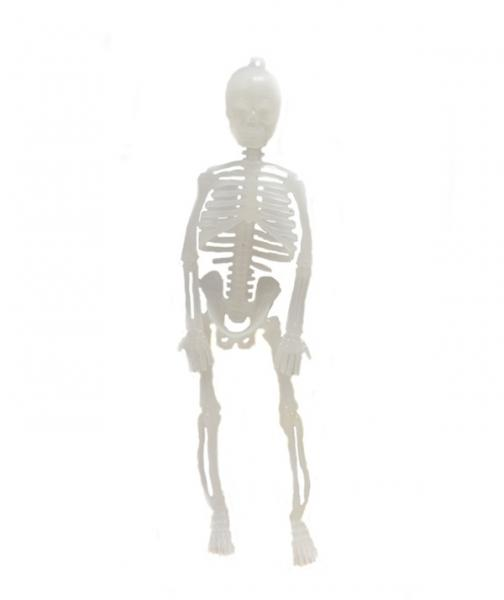 Скелет светонакопительный (20см)   Артикул: 03210046