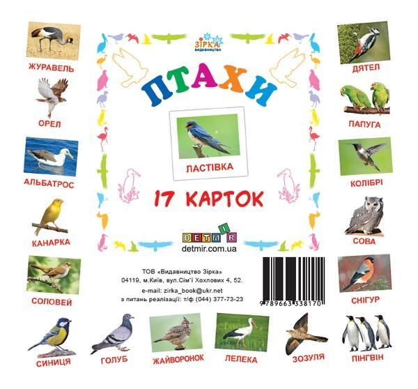 Картки міні Птахи (110х110 мм) (укр)   Артикул: 06338170
