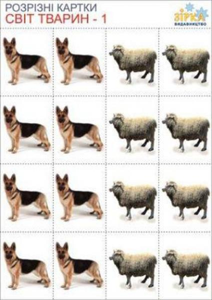 РК Світ тварин   Артикул: 06689371