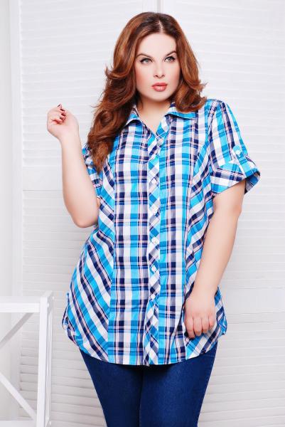 Рубашка в синюю клетку цвет голубой  КЛЕТКА