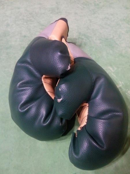 Детские перчатки для боевых исскуств