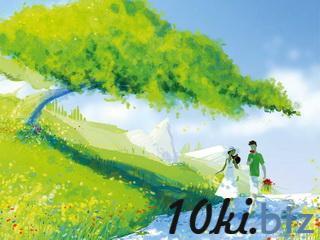 """Открытка """"Гулять с цветами и другом"""" Открытки и подарочные конверты купить на рынке Апраксин Двор"""