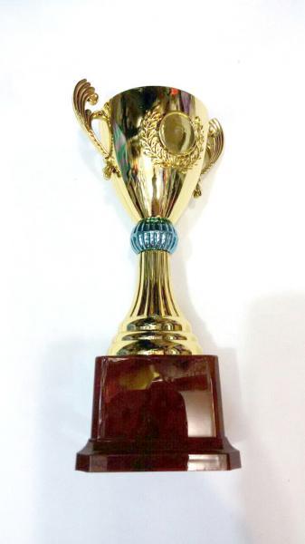 Кубок наградной. Высота 21 см