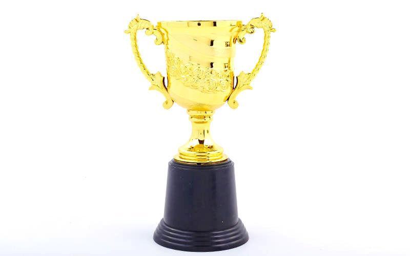 Наградной Кубок (золото)