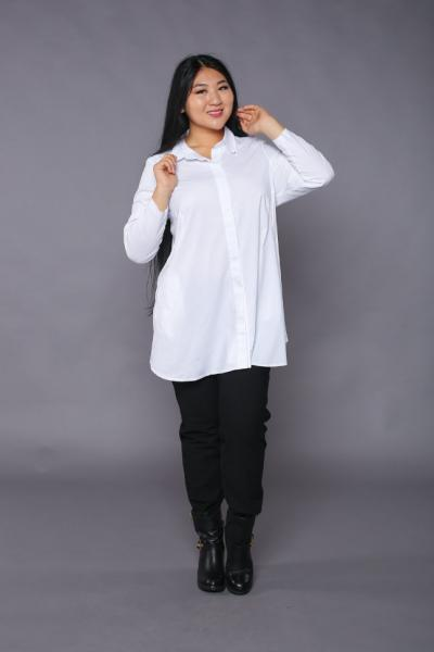 Рубашка-туника DP 1277