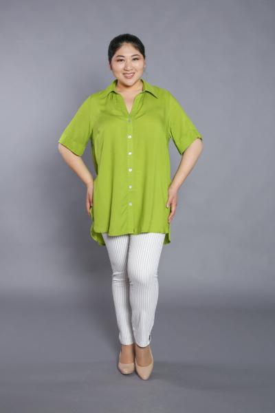 Рубашка-туника DP 1709
