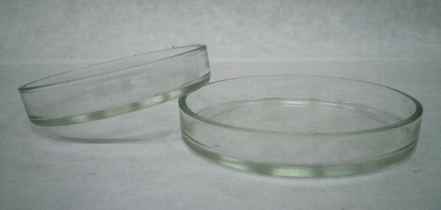 Чашка Петри (стекло)