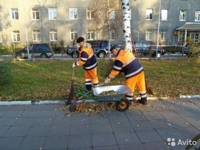 Услуга по  маркетинговому  поиску  Заказчиков и Подрядчиков  в Москве и области.