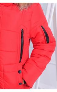 Фото Верхняя одежда (зима) 12198 Куртка АРНОЛЬД зимняя д/мал(красный)