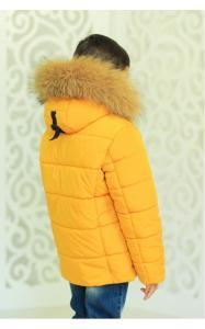 Фото Верхняя одежда (зима) 12200 Куртка АРНОЛЬД зимняя д/мал(горчица)